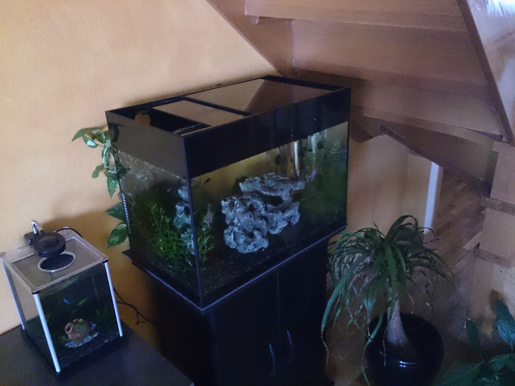 equipo para acuario